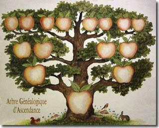arbre-genea-5g-pomme.jpg